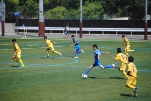 28 CY中国大会3